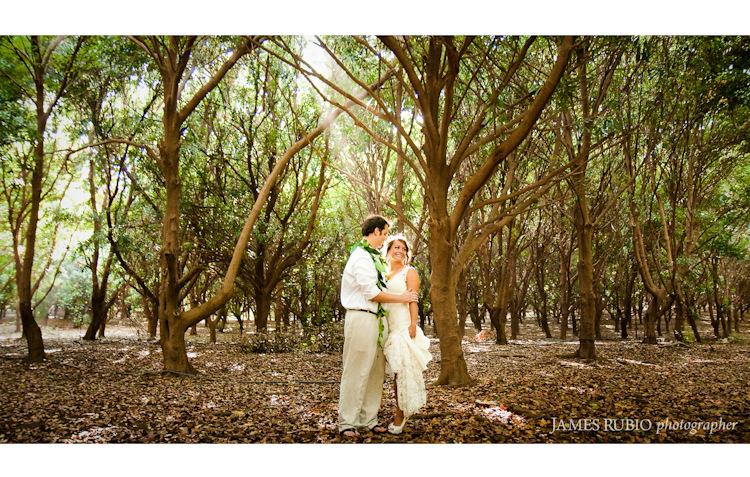 merceda-bill-big-island-hawaii-wedding-1034