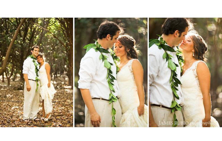 merceda-bill-big-island-hawaii-wedding-1035