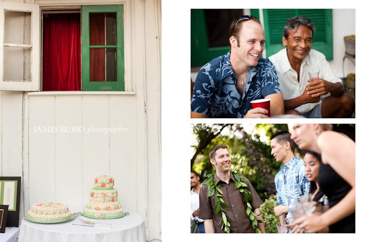 merceda-bill-big-island-hawaii-wedding-1038