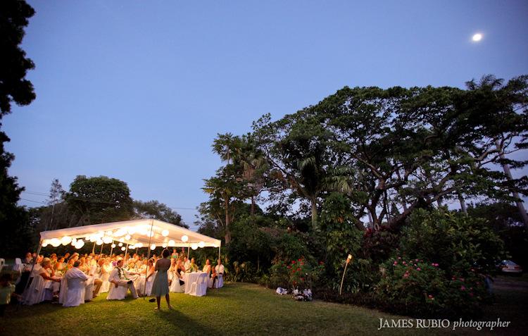 merceda-bill-big-island-hawaii-wedding-1039