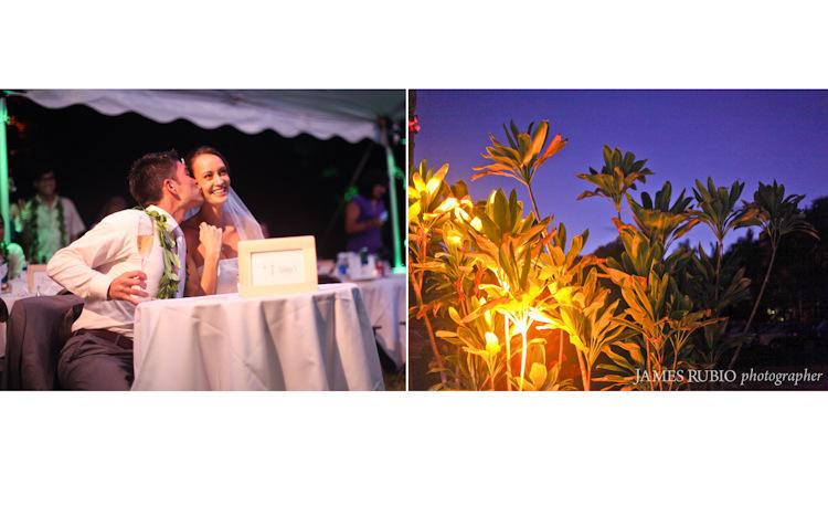 onaona-dave-wedding-hilo-big-island-wedding-hawaii-1026