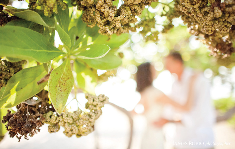 laura-mark-kona-big-island-hawaii-wedding-1010