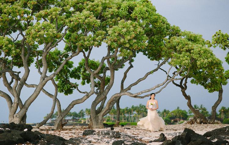 kohala-kikaua-big-island-wedding-105
