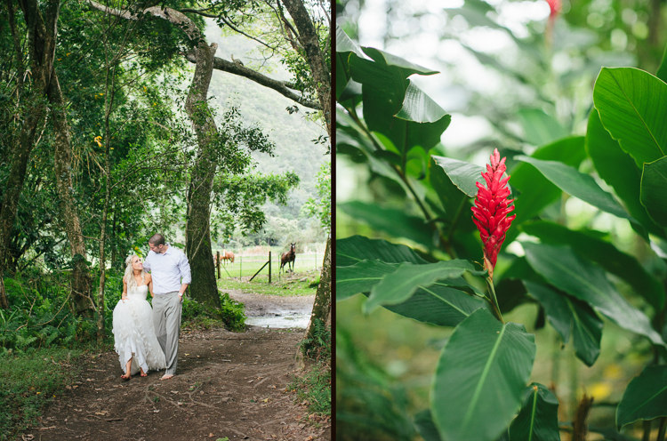 waipio-valley-wedding-big-island-hawaii-24