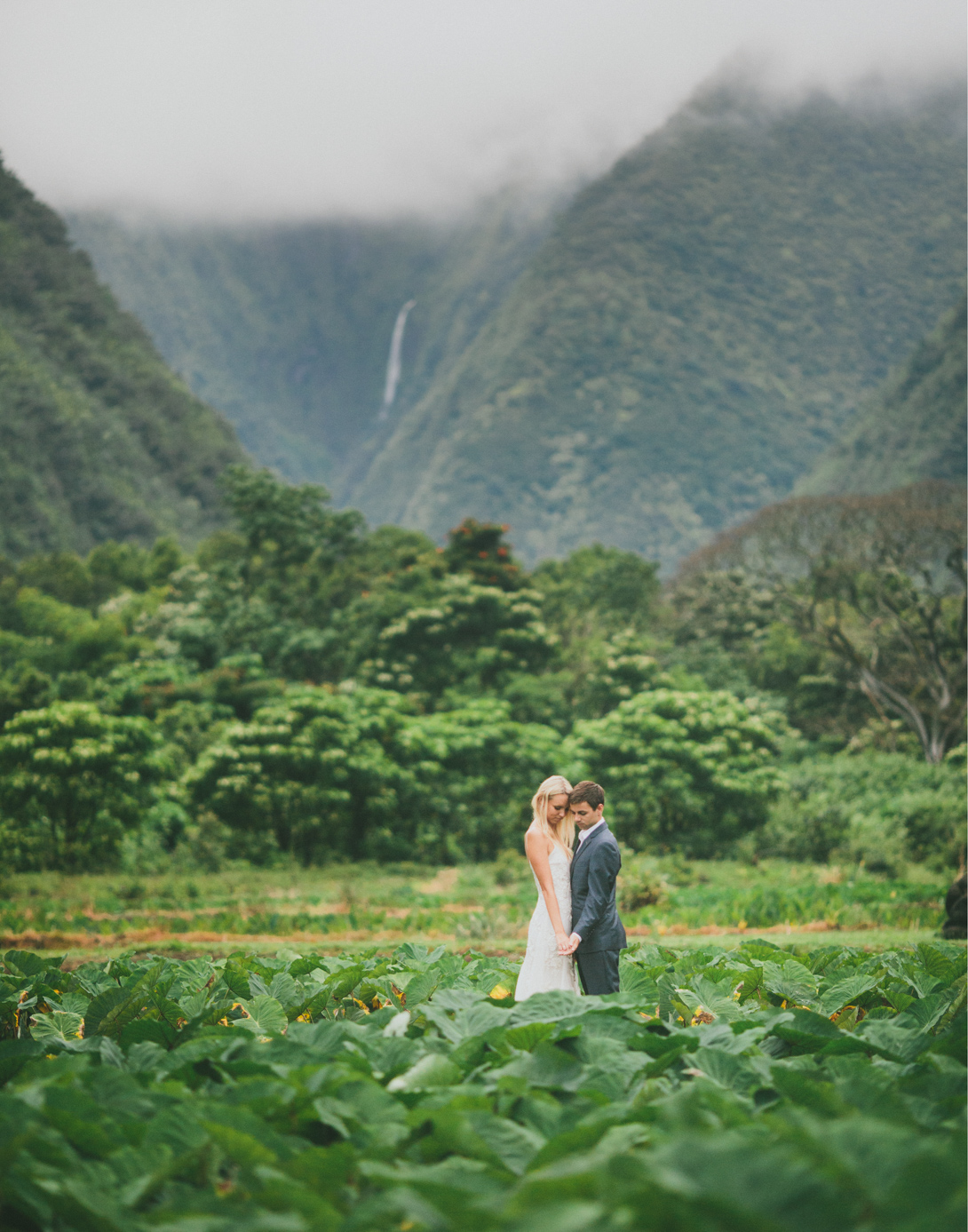 waipio-valley-sunrise-111